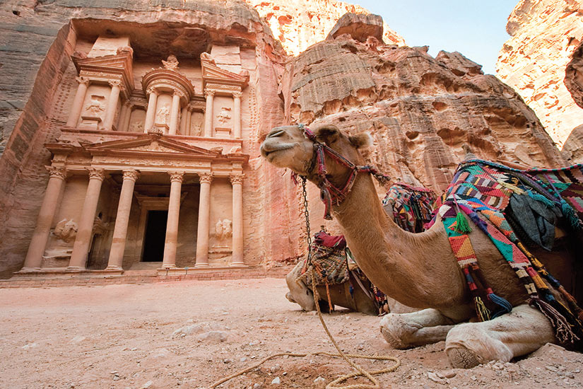 image Jordanie camel en face de la tresorerie Al Khazna  fo
