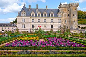 (vignette) Vignette France Loire Jardins chateau Villandry  fo